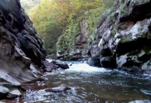 Private hydropower plants are destroying natural resourses