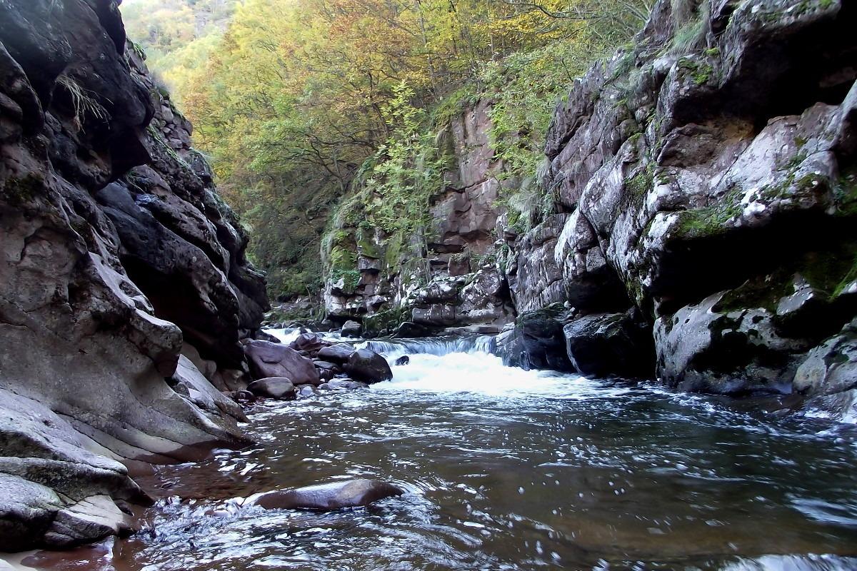 Skupština ipak usvojila izmene Zakona o zaštiti prirode i Zakona o vodama