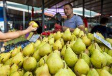Poljoprivreda u kleštima niskih cena