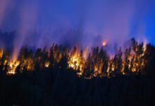 Zapad Amerike u plamenu –  najdramatičnija zabeležena sezona šumskih požara