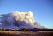 Australija: požari se proširili na 8.4 miliona hektara, stradalo 480 miliona životinja
