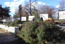 Strukovna udruženja zahtevaju obustavu izgradnje gondole Kalemegdan-Ušće